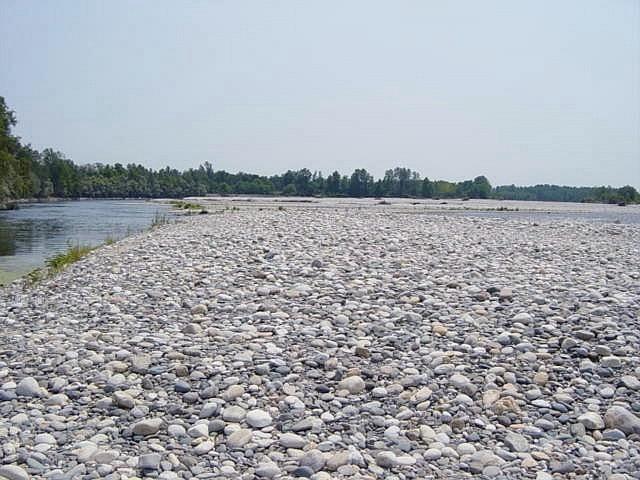 Il fiume ticino nella zona di abbiategrasso mi siccit 2003 - Letto di un fiume ...